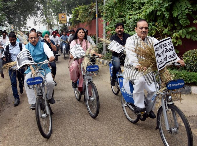 BJP MP Vijay Goel (L), MLA OP Sharma (R) and party suppporters carry stubbles as they ride bicycles to reach the residence of Delhi Deputy Minister Manish Sisodia, in New Delhi, Thursday, Nov. 7, 2019. (PTI Photo)