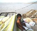 Flood waters receding fast in Krishna, Guntur