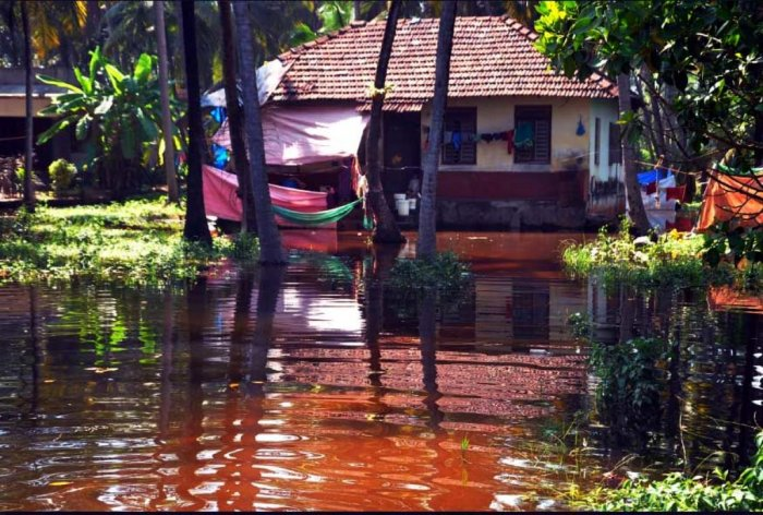 Houses marooned at Bettampady near Ullal, following a block in the estuary.
