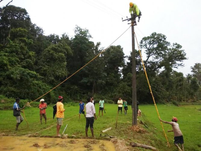 Local residents join hands with Cesc personnel in repairing an electricity line in Virajpet.