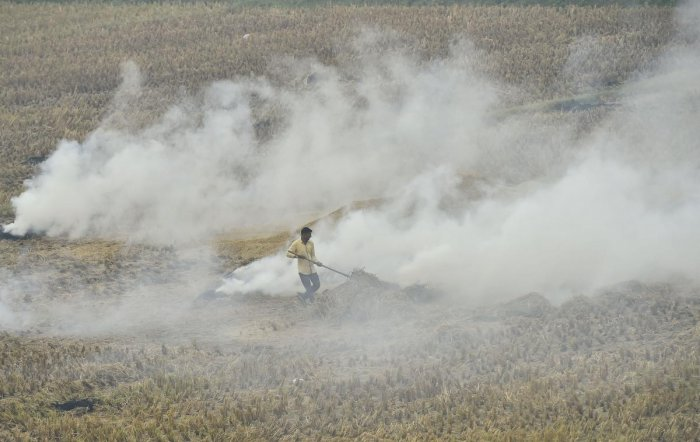 Even though the number of stubble-burning incidents have dropped in the two agrarian states over the past few days, the air quality in many places has remained extremely poor. PTI