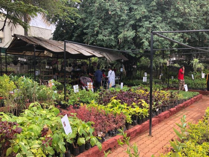 The 'Annual Garden Fair', on till November 24, is a way for people with disabilities to showcase their hardwork