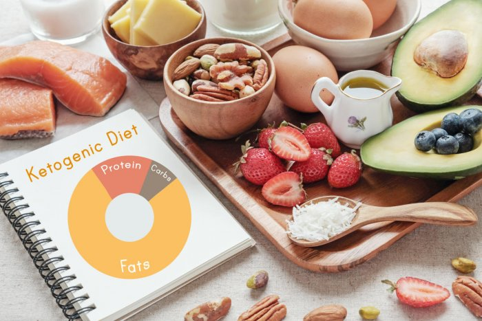 Image result for Ketogenic Diet May Help Fight the Flu