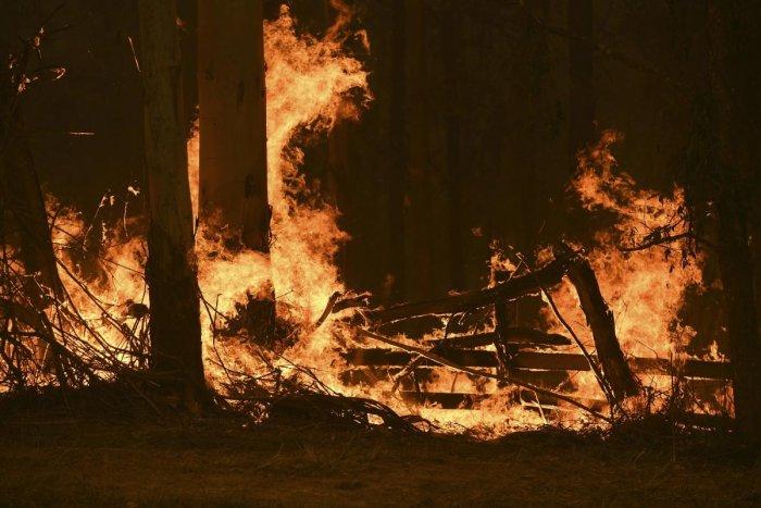 Devastating bushfires in eastern Australia. (AFP Photo)