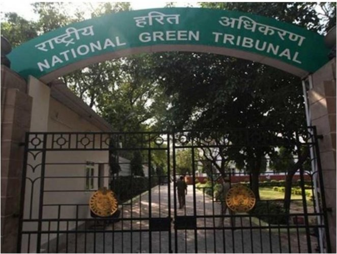 The tribunal was hearing a plea filed by Aavin Kumar Chadgal and others seeking direction not to start work at the allotted forest land situated at Bahu and Raika for expansion of High Court.