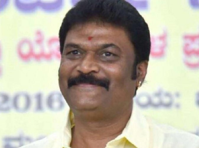 Between April 2018 and now, the movable assets of BJP's Vijayanagar candidate Anand Singh grew two-fold, from Rs 25.91 crore to Rs 50.33 crore.