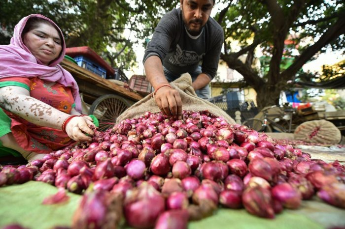 Each individual will get a maximum of two kg of onion at the rate of Rs 35 per kg. (PTI Photo)