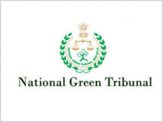 The symbol of the National Green Tribunal (NGT). Representative Image. (File Photo)