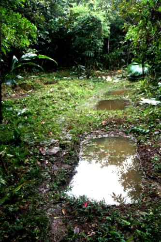 Rain water harvesting in Gori village in Lower Siang district in Arunachal Pradesh. dh photo