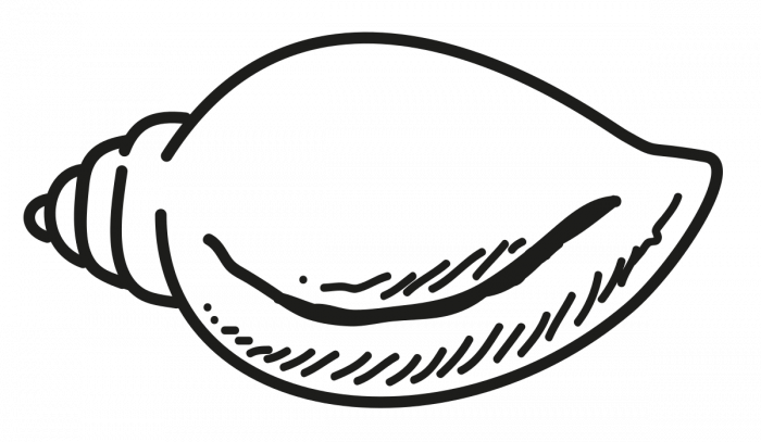 BJD logo. Photo credit: Wikipedia