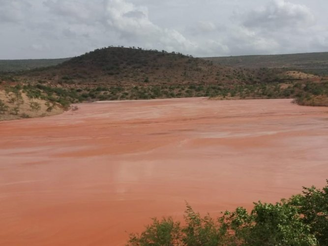 The Tummalapally Tailing pond, the blisters and deformities, the agriculture lands turned red with the seepage of radioactive slurry. Photo: HRF (Human Rights Forum)
