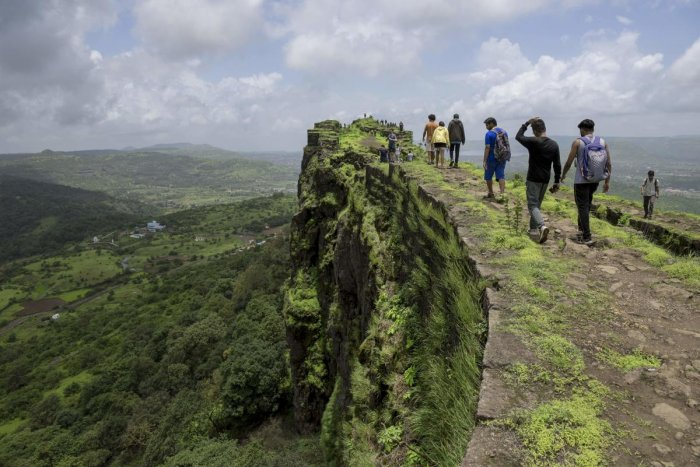 An MoEF officer, who appeared before the tribunal, said that they have compiled the data furnished by the governments of the states that fall in the Western Ghats and the same has been sent to a high-level working group. Photo/AFP