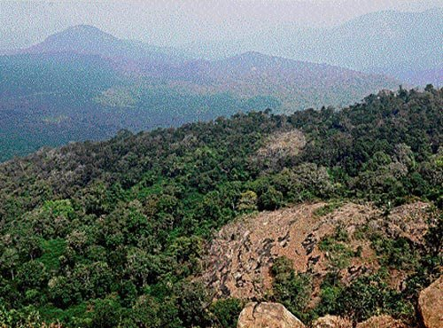 With this, around 262.43 sqkm area, including 49 villages, of Chamarajanagar, Kollegal and Yelandur taluks, come under the eco-sensitive zone. The move will put brakes on more than 30 commercial activities like quarrying, crushing and hotel business in the zone.