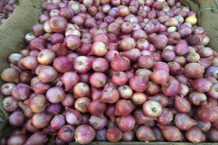 Import of onion from Egypt has not helped reduce the rise in the price of the vegetable.