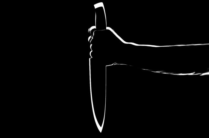 Raghu said he loves her and does not like it when she talks to others. He vowed not to spare her and suddenly pulled out a knife. Representative image/Pixabay