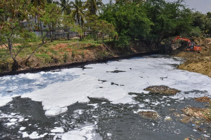 Foam is seen in Bellandur lake at Bellandur Kodi in Bengaluru. (DH Photo)