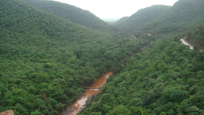 The state government has given the nod for restarting mining in Swamimalai forest range.