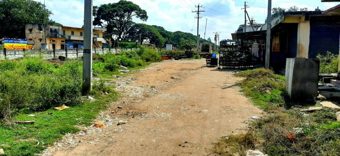 Waste from meat shops is dumped on the road in Kote area of Kadur. DH PHOTOS