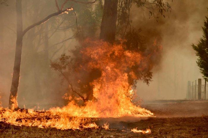 A bushfire burns on a property in Balmoral, 150 kilometres southwest of Sydney