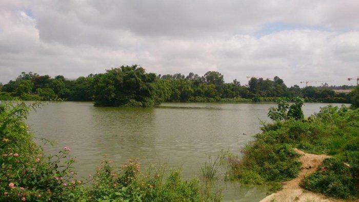 Doddakallasandra Lake.