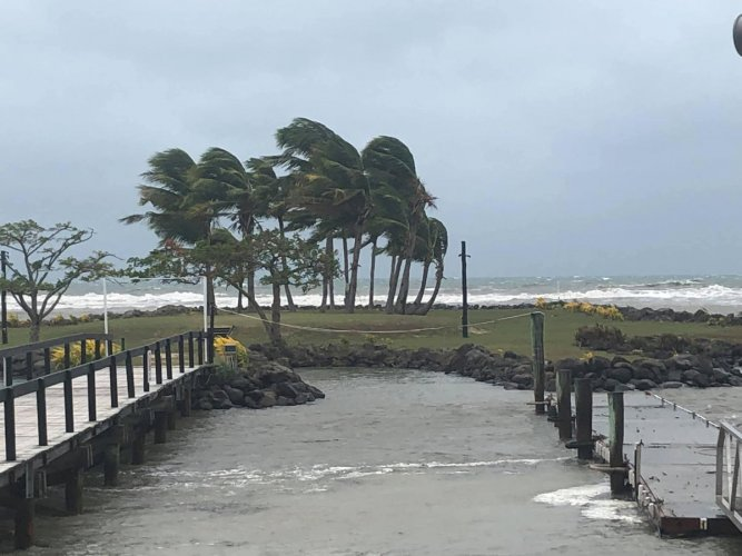 Trees buffeted by strong winds are seen near a beach during tropical cyclone Sarai in Viseisei, Fiji December 27, 2019 in this picture obtained from social media. Photo/Reuters