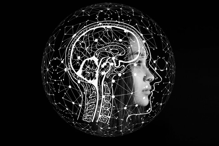 According to the study, published in the journal Neuron, different classes of nerve cells control positive and negative motivations, sending opposing signals along this information-processing hub in the brain. Representative image/Pixabay