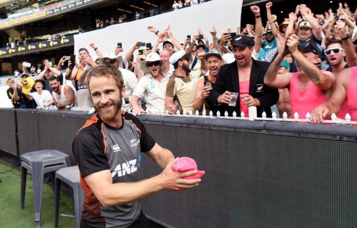 New Zealand's captain Kane Williamson. (AFP photo)