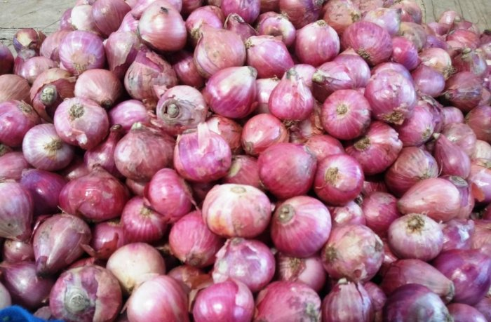 After demands from various states, the Centre had ordered imports of 42,000 tonnes of onions from countries such as Egypt, Turkey, Iran, Afghanistan to boost supplies in the domestic markets where prices of the bulb had touched Rs 150 per kg. (DH Photo)