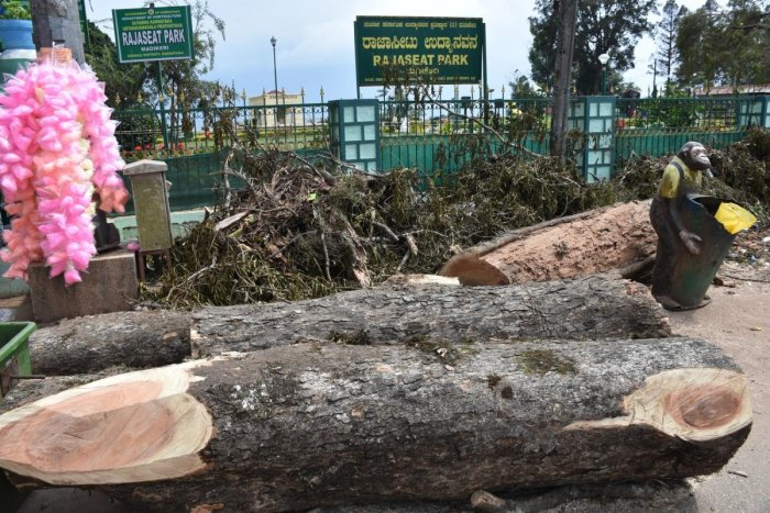 The trees cut in front of Raja Seat, Madikeri.