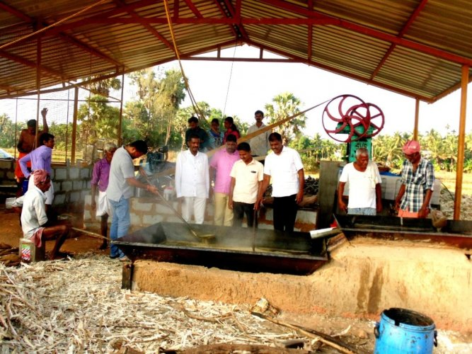 Udupi Jilla Raitha Sangha representatives visited a jaggery making unit at Shanadi near Kundapur.