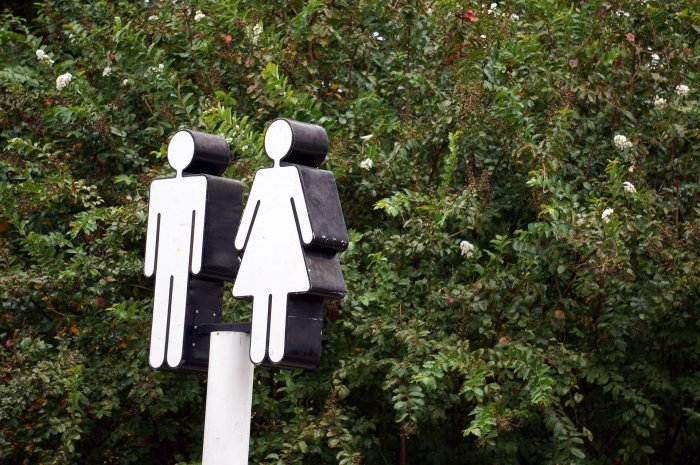 We are almost 250 years away from achieving any semblance of it, says the World Economic Forum's (WEF) global gender gap report 2020. Representative image/Pixabay