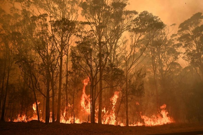 A bushfire burns in the town of Moruya, south of Batemans Bay, in New South Wales. (AFP photo)