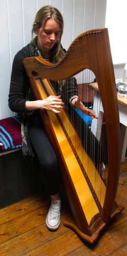 The traditional celtic harp