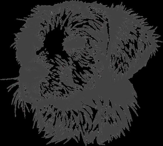 Representative image. (Photo/Pixabay)
