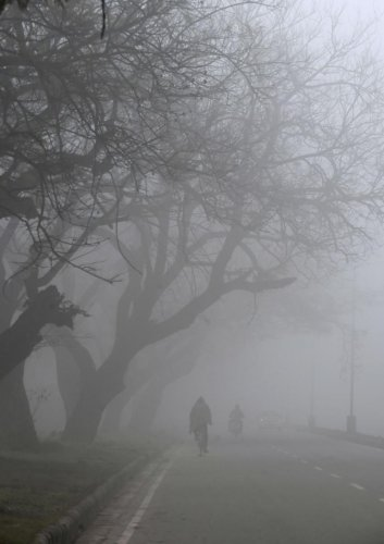 Cold wave prevails in most parts of Punjab, Haryana | Deccan Herald