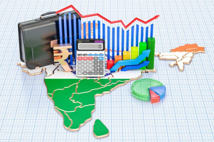 The Survey observed that the birth of new firms is very heterogeneous across Indian districts and sectors.