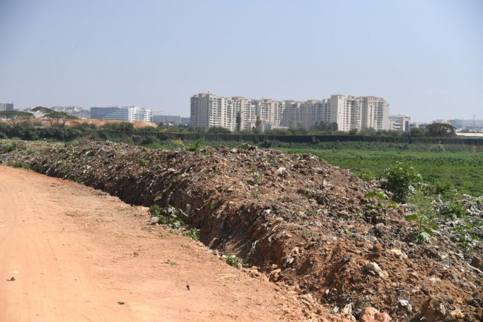 By BDA's own admission, the lake has about 50 lakh cubic metres of silt, while Varthur lake has about 35 lakh cubic metres. (Credit: DH Photo)