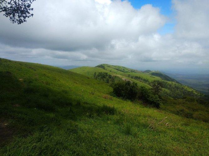 A view of Himavad Gopalaswamy Hill in Chamarajanagar district. dh photo