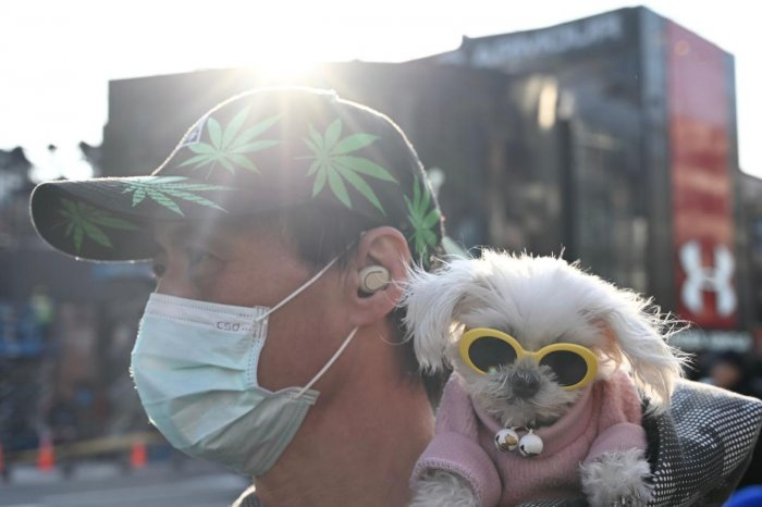 A man wears a protective facemask and carries his dog in Ximen district in Taipei during the Lunar New Year of Rat