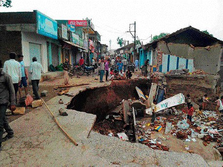 Floods kill nine lions in Gujarat