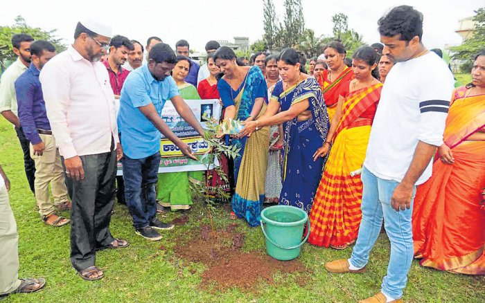 5,000 saplings to expand green cover