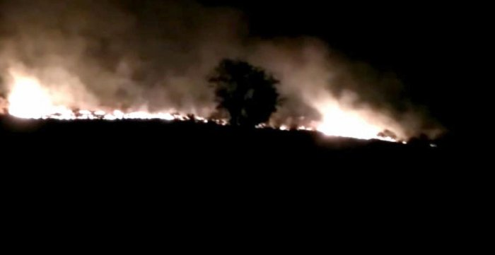 Fire in forest under Cauvery Wildlife Sanctuary limits, in Malavalli taluk, Mandya district, on Thursday night.