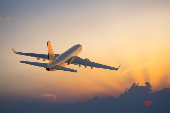 With global travel bans due to the pandemic, many airlines are staring at massive losses. iStock