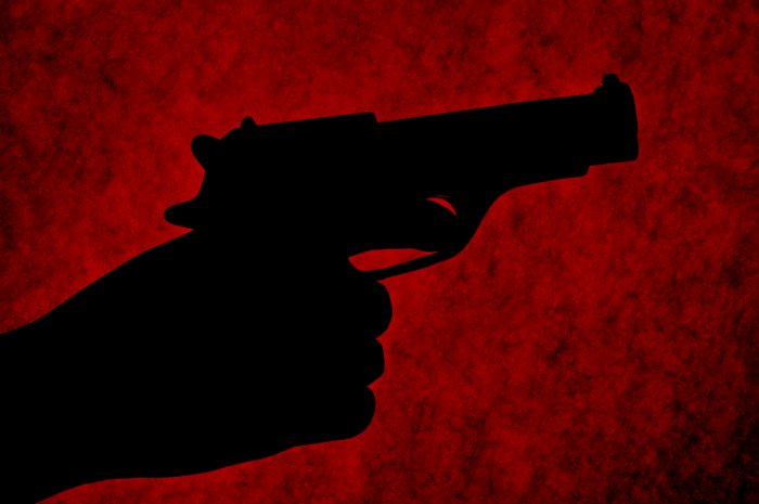The accused shot his two daughters dead with a country-made pistol. Representative image/iStock