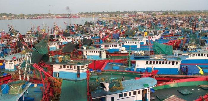 Boats anchored at Old Port Dakke in Mangaluru. (Credit: DH photos/ Govindraj Javali)