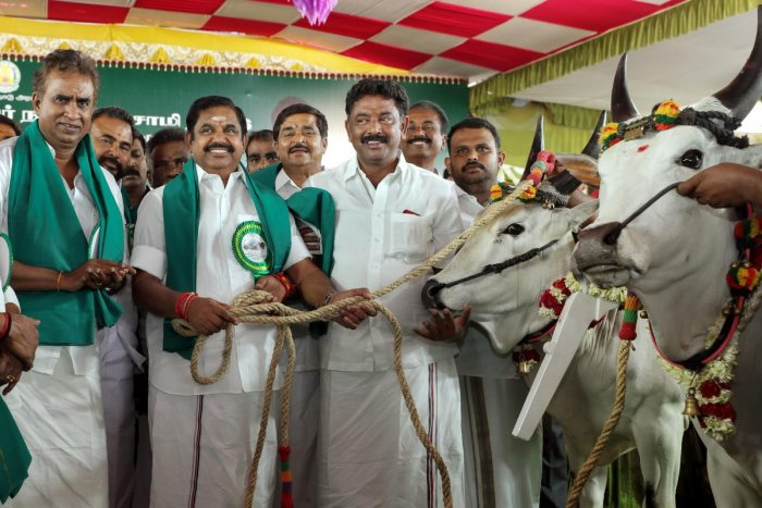 Making an announcement in the Assembly under Rule 110, Chief Minister Edappadi K Palaniswami said his government was committed to fulfilling the dream of late AIADMK chief J Jayalalithaa who wanted the benefits of the economic development to reach every section of the society. (PTI File Photo)