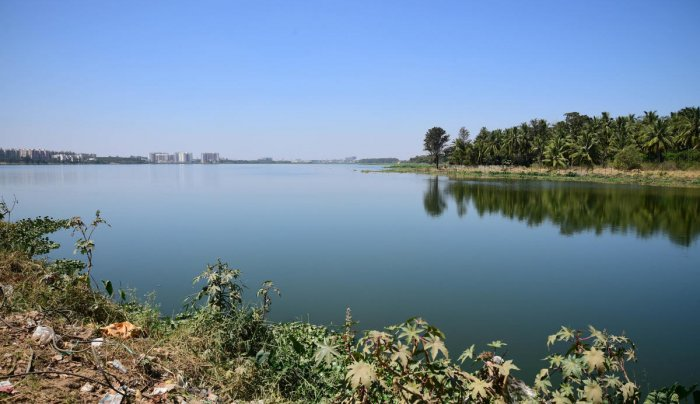 Restoration and rejuvenation of lakes, stormwater drains, improved sewage treatment plants together cost Rs 50,000 crore, a high price to pay for the mistakes of the past 15-20 years.
