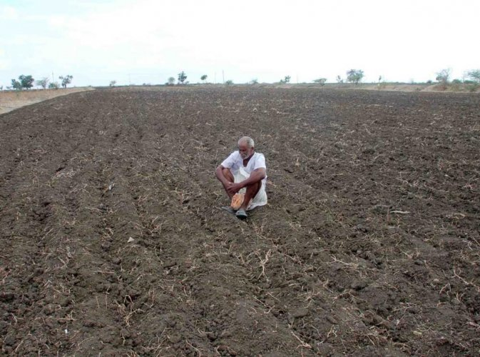 Guidelines stipulate that a taluk can be declared drought-hit if there is 60% deficient rainfall, a continuous dry spell for more than three weeks and a minimum of 33% crop loss.