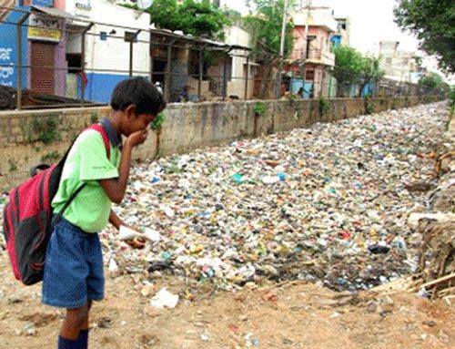 Garbage endangers wildlife
