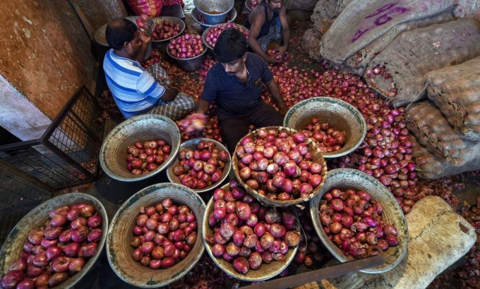 The retail prices of onion had soared to Rs 100/kg a week back in the national capital, but the government's various interventions helped it to cool down a bit, but the rates are still ruling high at over Rs 60/kg in Delhi as well as other consuming areas of the country. Photo/PTI